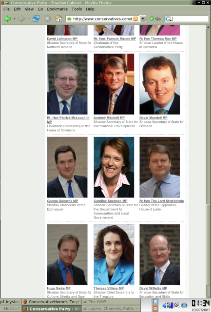 Tory party website screenshot
